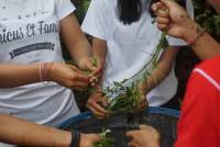 UDAYANA HELD GARDENING FOR OUR UDAYANA