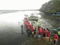 Together: Mangrove Planting; Increasing Solidarity of  Ormawa in FISIP Unud