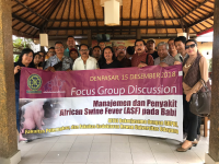 Management FGD and ASF Disease in Pigs