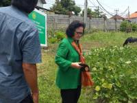 Three Assessors Visited the Trial Garden of Udayana University